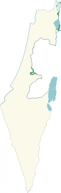 Bild Wikipedia